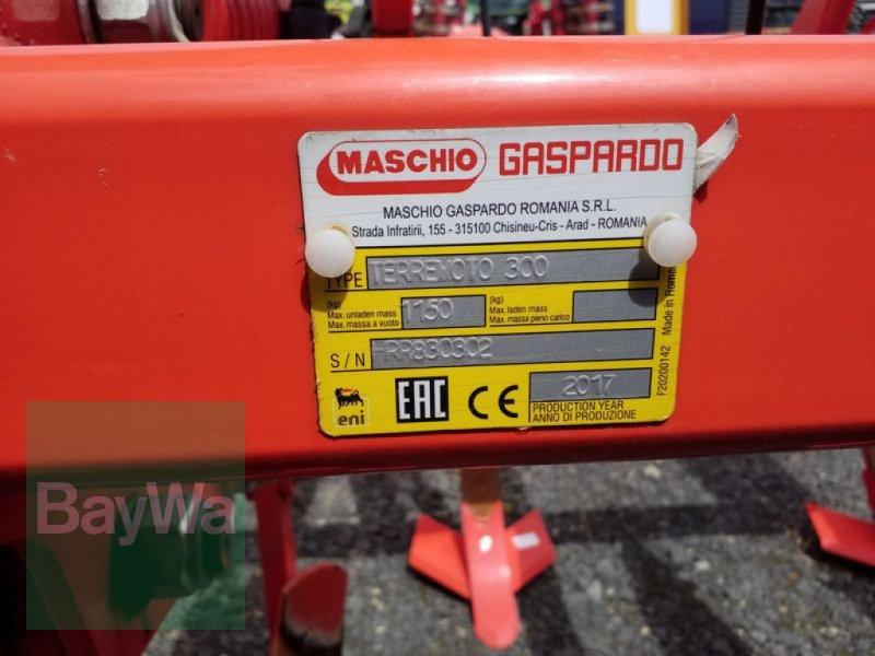 Grubber des Typs Maschio TERREMOTO 3 FEDERSICHERUNG DRW, Gebrauchtmaschine in Bamberg (Bild 10)