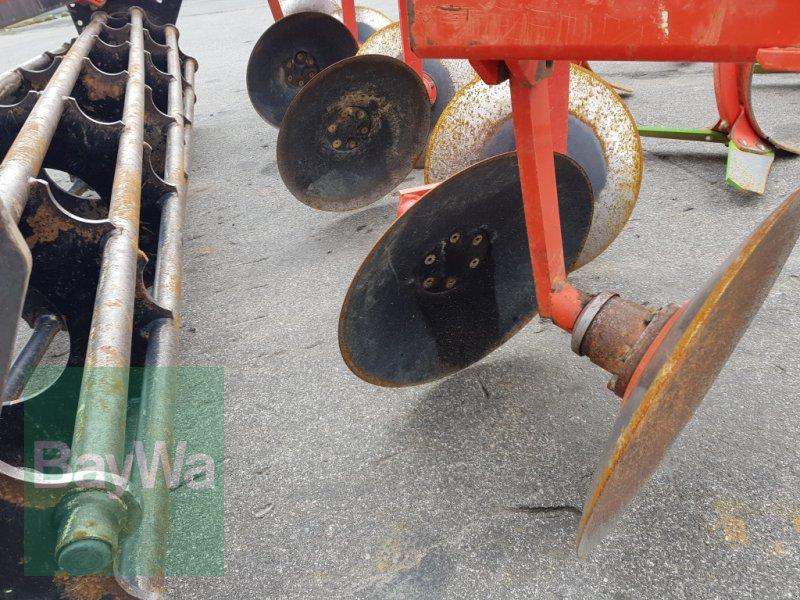 Grubber des Typs Maschio Terremoto 300 S, Gebrauchtmaschine in Bamberg (Bild 6)