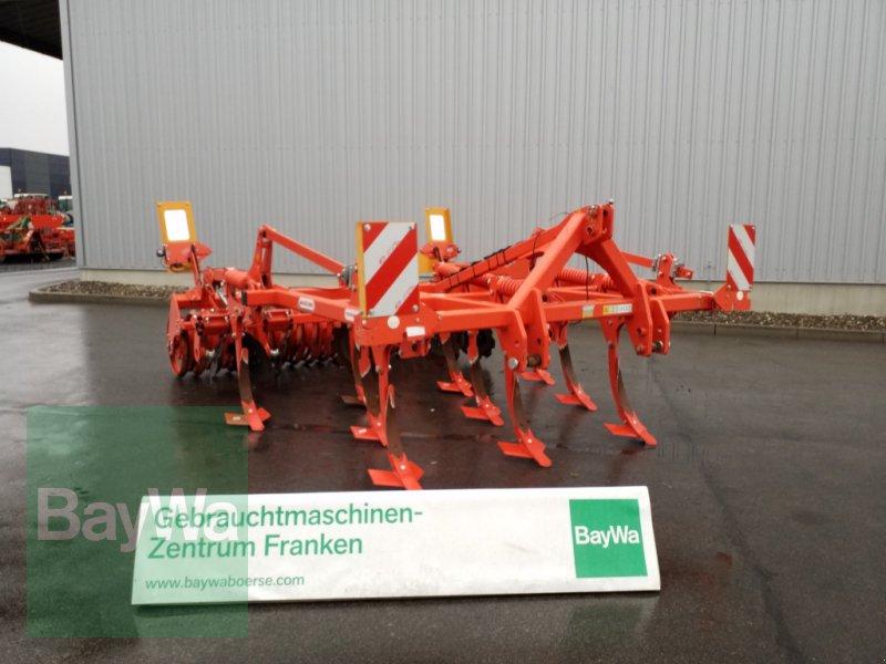 Grubber des Typs Maschio Terremoto 300, Gebrauchtmaschine in Bamberg (Bild 1)