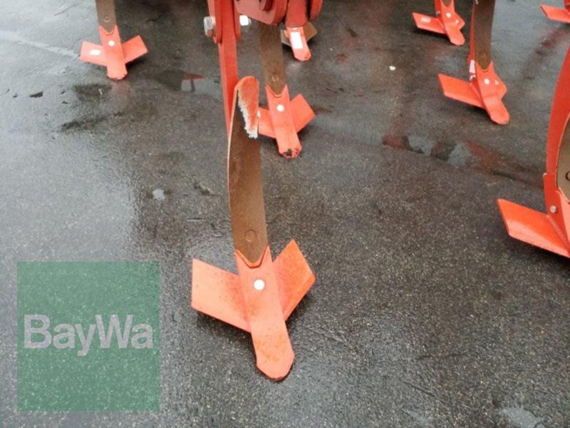 Grubber des Typs Maschio Terremoto 300, Gebrauchtmaschine in Bamberg (Bild 11)