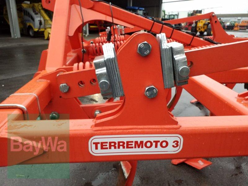 Grubber des Typs Maschio Terremoto 300, Gebrauchtmaschine in Bamberg (Bild 12)