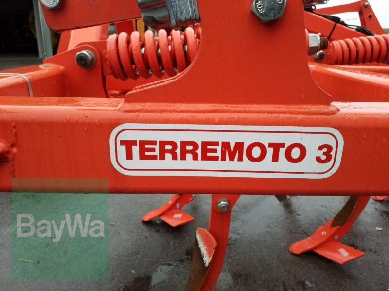 Grubber des Typs Maschio Terremoto 300, Gebrauchtmaschine in Bamberg (Bild 13)