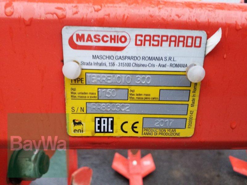 Grubber des Typs Maschio Terremoto 300, Gebrauchtmaschine in Bamberg (Bild 14)