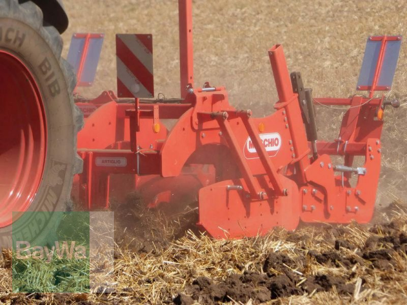 Grubber des Typs Maschio TIEFENLOCKERER ARTIGLIO 300, Vorführmaschine in Herzberg (Bild 2)