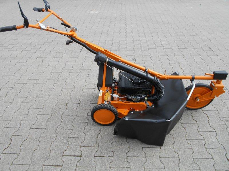 Hochgras/Wiesenmäher типа AS-Motor AS 21-2T ES, Neumaschine в Bühl (Фотография 1)