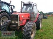 Massey Ferguson 3080 Hopfen   16-16 Gang Hopfentraktor
