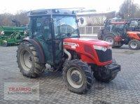 Massey Ferguson 3645 F Plantagen Hopfentraktor