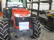 Hopfentraktor типа Massey Ferguson 3650 F, Gebrauchtmaschine в Abensberg
