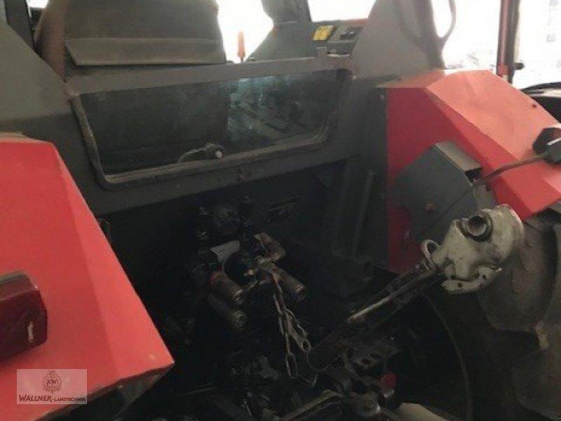 Hopfentraktor типа Massey Ferguson 4238, Gebrauchtmaschine в Wolnzach (Фотография 3)