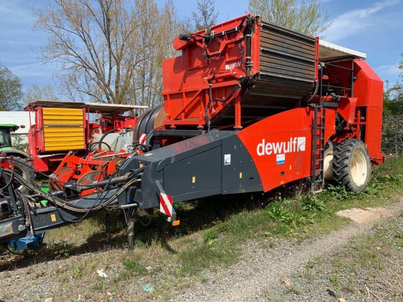 Kartoffel-VE a típus Dewulf RJA2060, Gebrauchtmaschine ekkor: Dannstadt-Schauernheim (Kép 1)