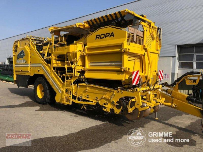 Kartoffel-VE типа ROPA Keiler II, Gebrauchtmaschine в Damme (Фотография 1)