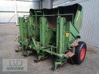 Kartoffellegemaschine des Typs Hassia GLB-4D в Spelle