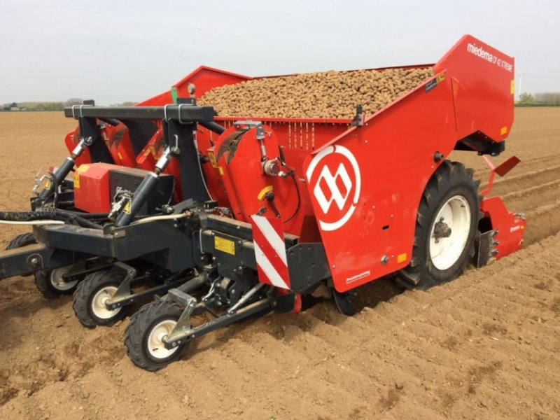 Kartoffellegemaschine типа Miedema CP42, Gebrauchtmaschine в Horsens (Фотография 1)