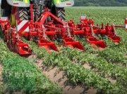 Grimme Häufeldammformer GH 4 Öko Tehnologii de recoltat cartofi