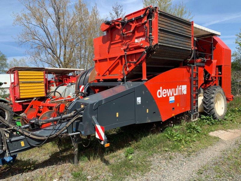 Kartoffelroder типа Dewulf RJA2060, Gebrauchtmaschine в Dannstadt-Schauernheim (Фотография 1)