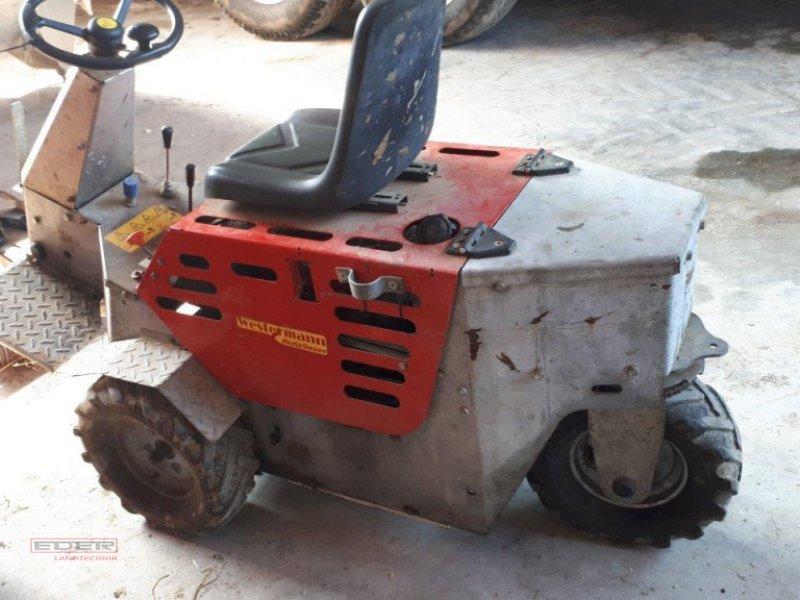 Kehrmaschine des Typs Westermann Cleanmeleon 2, Gebrauchtmaschine in Pähl (Bild 1)