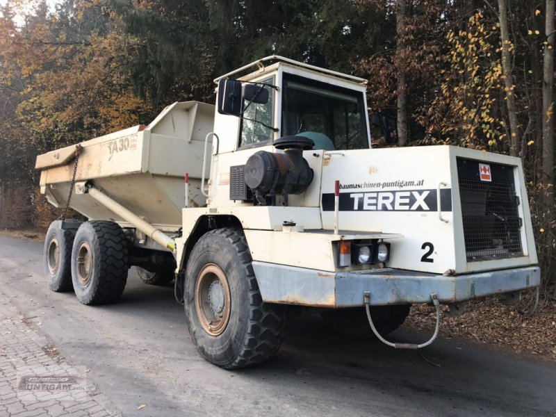 Knickgelenkte Dumper типа Terex TA 25, Gebrauchtmaschine в Deutsch - Goritz (Фотография 1)
