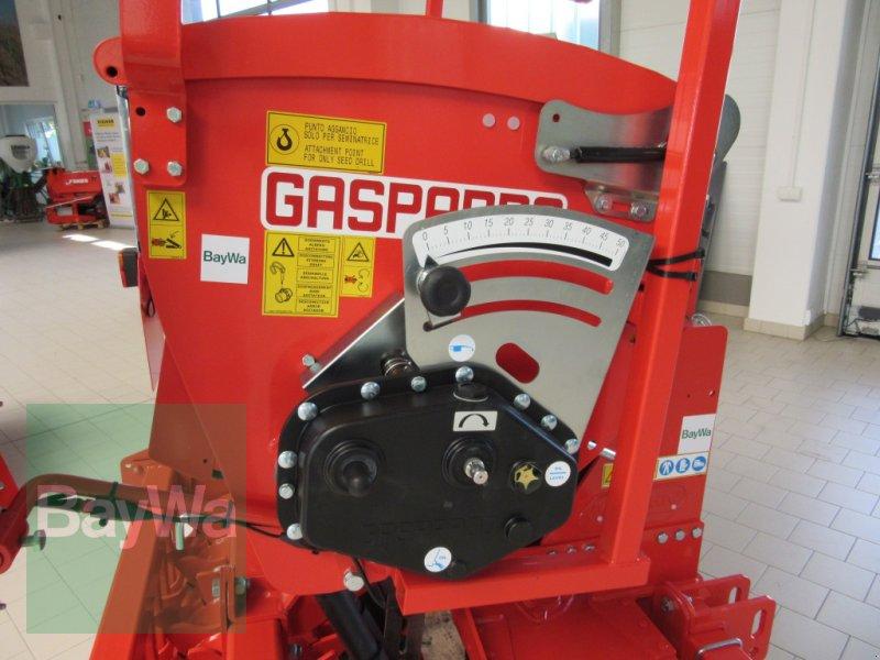 Kombination des Typs Maschio Delfino 1300, Neumaschine in Volkach (Bild 3)