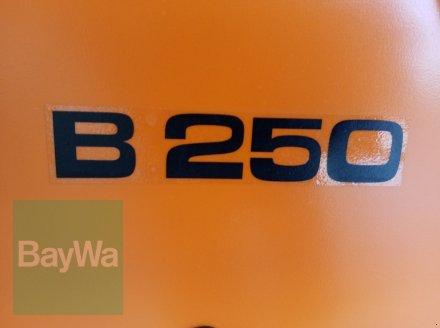 Kommunaltraktor des Typs Holder B 250, Gebrauchtmaschine in Bamberg (Bild 24)