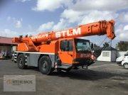 Kran типа Liebherr LTM1030-2, Gebrauchtmaschine в Baie-Mahault