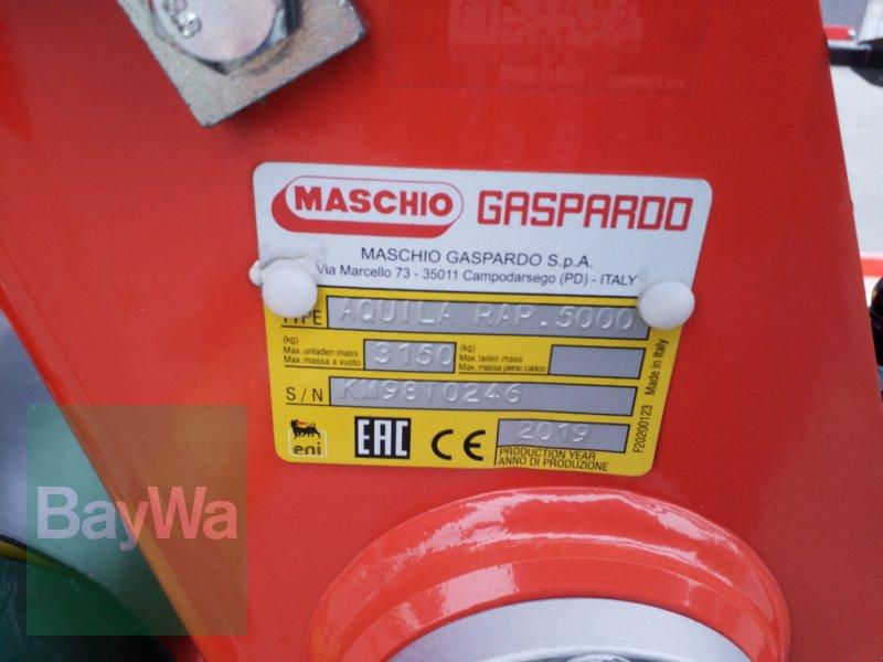 Kreiselegge des Typs Maschio Aquila Rapido 5000 *Miete ab 345€/Tag*, Gebrauchtmaschine in Bamberg (Bild 13)