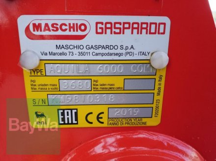 Kreiselegge des Typs Maschio AQUILA-RAPIDO PLUS 6000 K, Gebrauchtmaschine in Bamberg (Bild 18)
