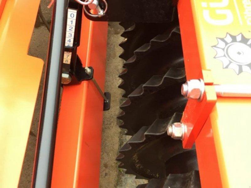Kreiselegge des Typs Maschio DM 3000 mit Güttler Synthetic Ultra 500 Walze + hydr. Anbauteile, Gebrauchtmaschine in Laberweinting (Bild 8)