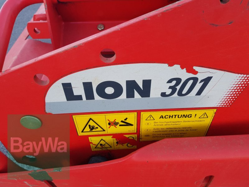 Kreiselegge des Typs Pöttinger Lion 301, Gebrauchtmaschine in Bamberg (Bild 5)