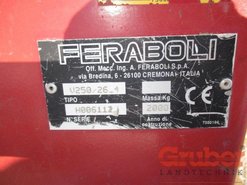 Kreiselegge des Typs Sonstige Feraboli 25/4, Gebrauchtmaschine in Ampfing (Bild 5)