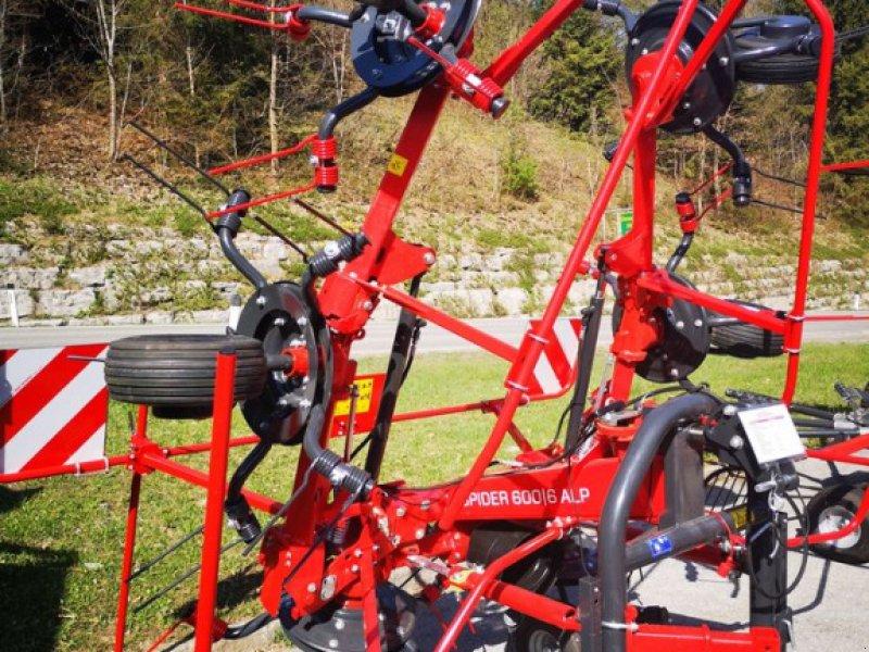 Kreiselheuer des Typs SIP Kreisel Zettwender Spider 600/6 Alp, Neumaschine in Burgkirchen (Bild 1)