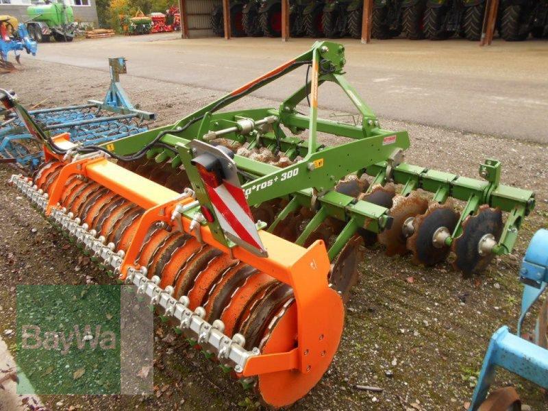 Kurzscheibenegge des Typs Amazone CATROS 3003 SPECIAL, Gebrauchtmaschine in Mindelheim (Bild 6)