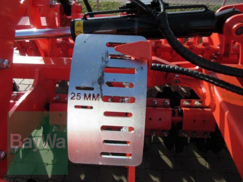 Kurzscheibenegge des Typs Maschio KURZSCHEIBENEGGE VELOCE 400 DR, Neumaschine in Erbach (Bild 10)