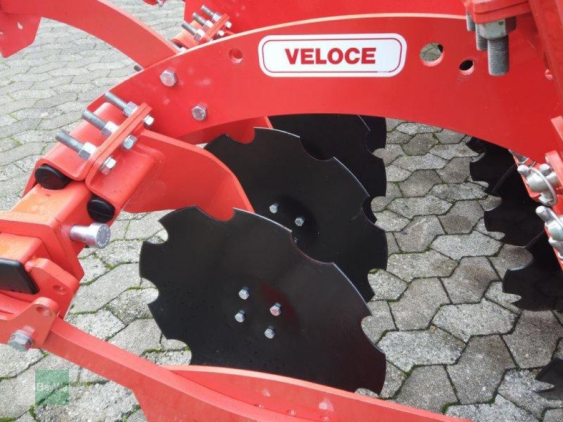 Kurzscheibenegge des Typs Maschio VELOCE 300 + OTICO-WALZE, Gebrauchtmaschine in Manching (Bild 6)