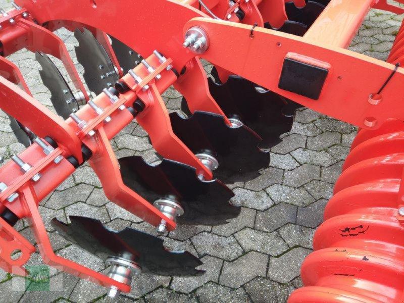 Kurzscheibenegge des Typs Maschio VELOCE 300 + OTICO-WALZE, Gebrauchtmaschine in Manching (Bild 5)