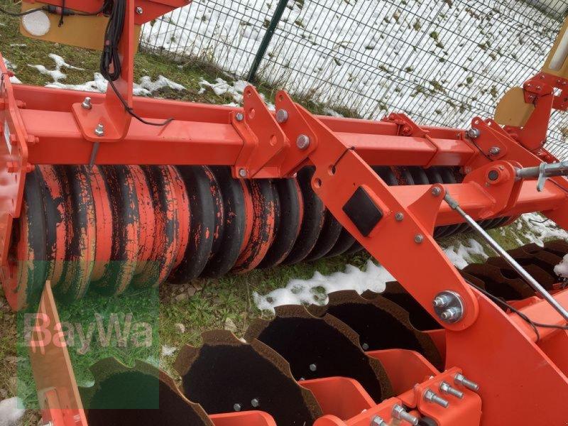 Kurzscheibenegge des Typs Maschio VELOCE 300, Vorführmaschine in Großweitzschen  (Bild 6)