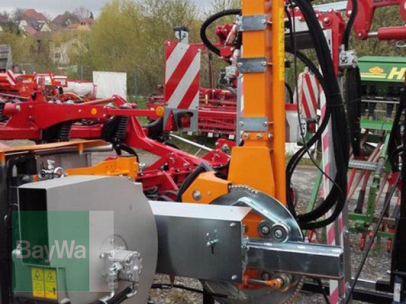 Laubschneider des Typs Binger EB 490 ENTLAUBER PROFESSIONAL, Vorführmaschine in Ilsfeld (Bild 1)