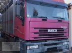 LKW des Typs Iveco Magirius - Viehtransporter in Pragsdorf