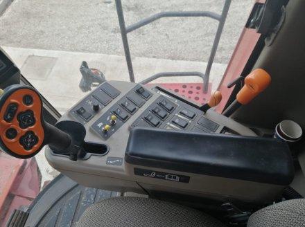 Mähdrescher des Typs Case IH 7088, Gebrauchtmaschine in Orţişoara (Bild 5)