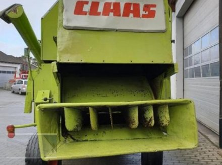 Mähdrescher des Typs CLAAS Dominator 48, Gebrauchtmaschine in Kleinlangheim - Atzhausen (Bild 5)