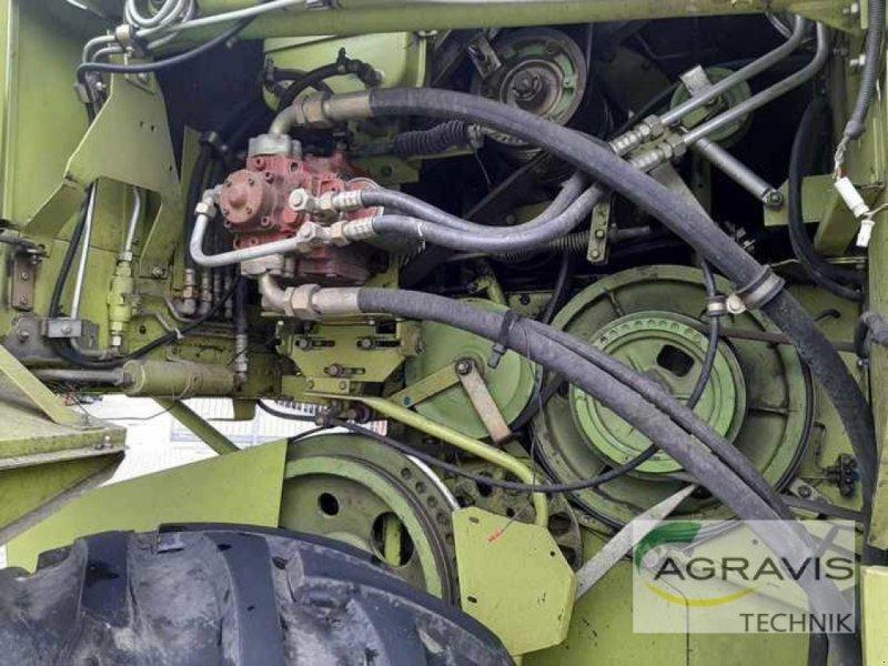 Mähdrescher des Typs CLAAS DOMINATOR 98 SL-CLASSIC, Gebrauchtmaschine in Alpen (Bild 5)