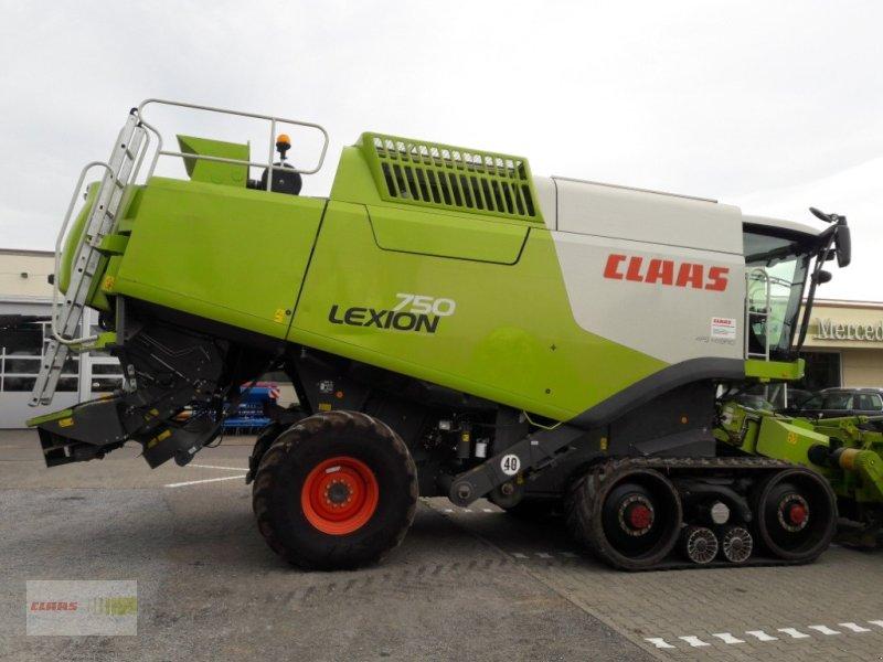 Mähdrescher des Typs CLAAS Lexion 750 TT PREIS reduziert !!!, Gebrauchtmaschine in Langenau (Bild 1)