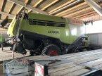 Mähdrescher des Typs CLAAS Lexion 770 TerraTrac in Woltersdorf