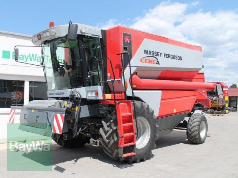Mähdrescher des Typs Massey Ferguson 7256 CEREA AL, Gebrauchtmaschine in Straubing (Bild 1)