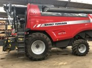 Mähdrescher des Typs Massey Ferguson 7370 Beta, Gebrauchtmaschine in Grindsted