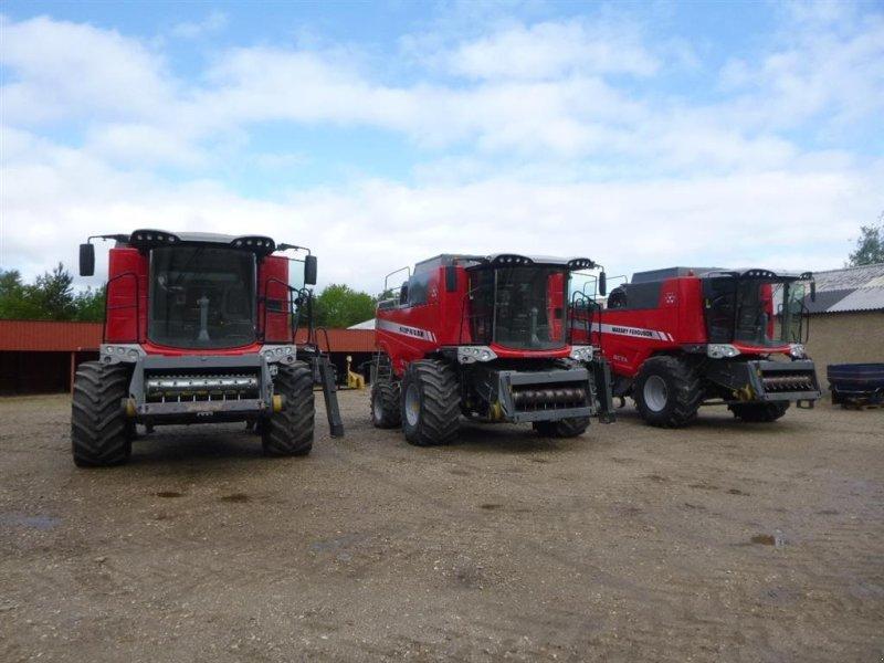 Mähdrescher des Typs Massey Ferguson KØBES: ACTIVA, BETA, CENTORA, DELTA, Gebrauchtmaschine in Skive (Bild 1)