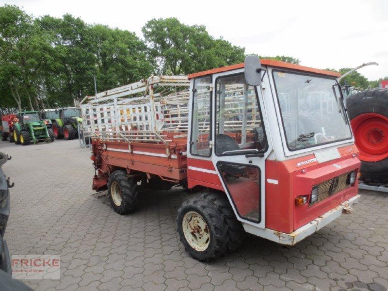 Mähtrak & Bergtrak des Typs Lindner T 3500S 4X4, Gebrauchtmaschine in Bockel - Gyhum (Bild 1)
