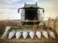 CLAAS Lexion TT Umbausatz Mais Fahrwerk Équipement pour culture de maïs