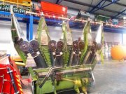 Maisgebiß tip CLAAS Kettengebiss 4-reihig, Gebrauchtmaschine in Schutterzell