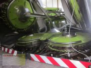 CLAAS ORBIS 600 AC AUTO CONTOUR, 8-reiher, für CLAAS JAGUAR 800 / 900 Maisgebiß
