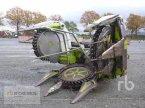 Maisgebiß typu CLAAS RU450XTRA v Meppen-Versen
